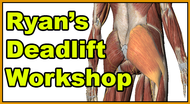 Ryan's Deadlift Seminar for Training Staff and Glute Anatomy Review