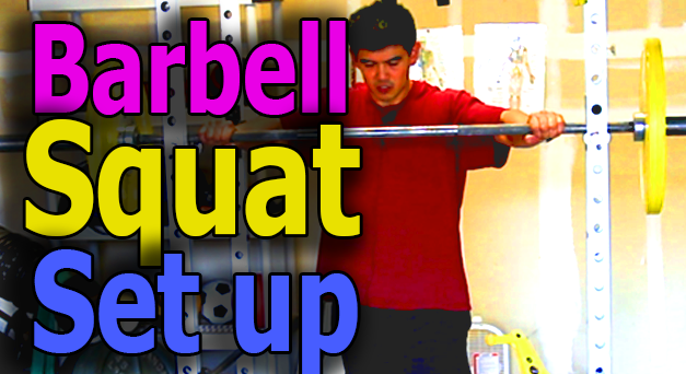 barbell squat technique set up
